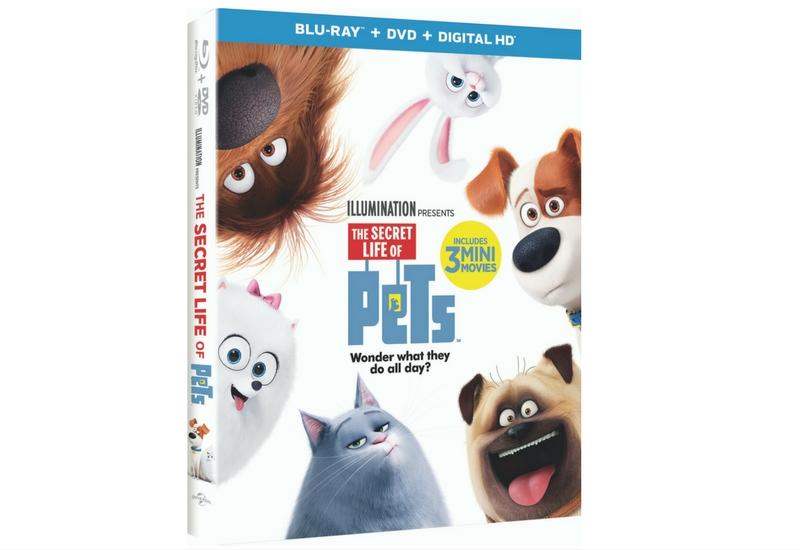 Sorteo #TheSecretLifeofPets DVD.